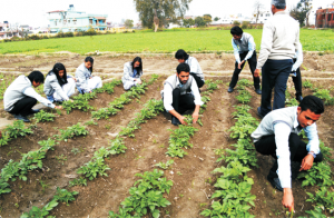 bsc agriculture colleges in dehradun uttarakhand