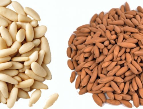 8 HEALTH BENEFITS OF PINE NUTS (CHILGOZA)-THE NUTTY WINTER TREAT