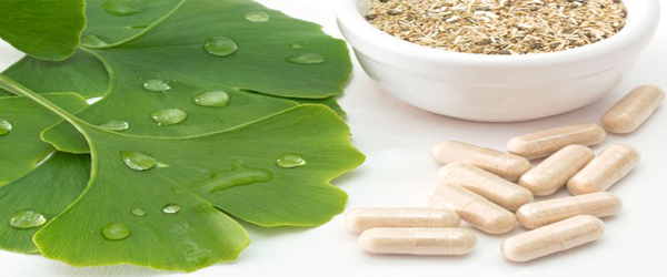 Health Benefits of Ginkgo Biloba
