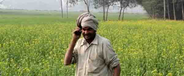 Transfer of Agriculture Technology and Krishi Vighyan Kendra in An India