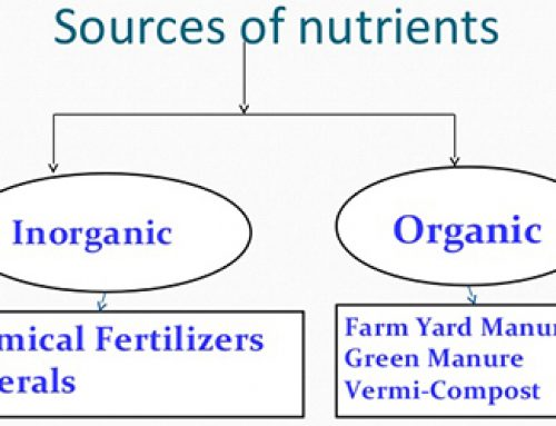 AVAILABILITY OF MICRO-NUTRIENTS IN ORGANIC AND INORGANIC FERTILIZERS (IN PPM)