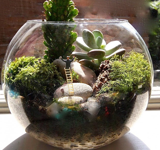 TERRARIUMS - -GIVING PLEASURE EFFECTS TO EYES