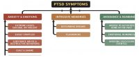 Post traumatic stress disorder effect on the body