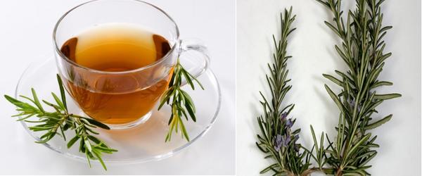 Rosemery Tea|UCBMSH.ORG