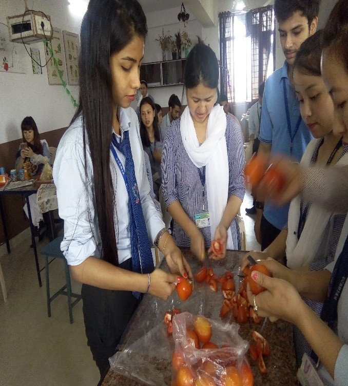 Washing and cutting of tomato for ketchup